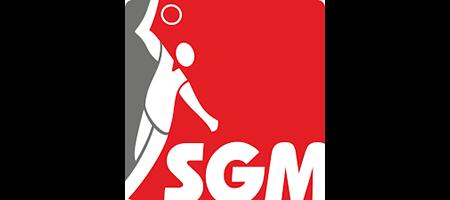 VIMpay SGM Logo